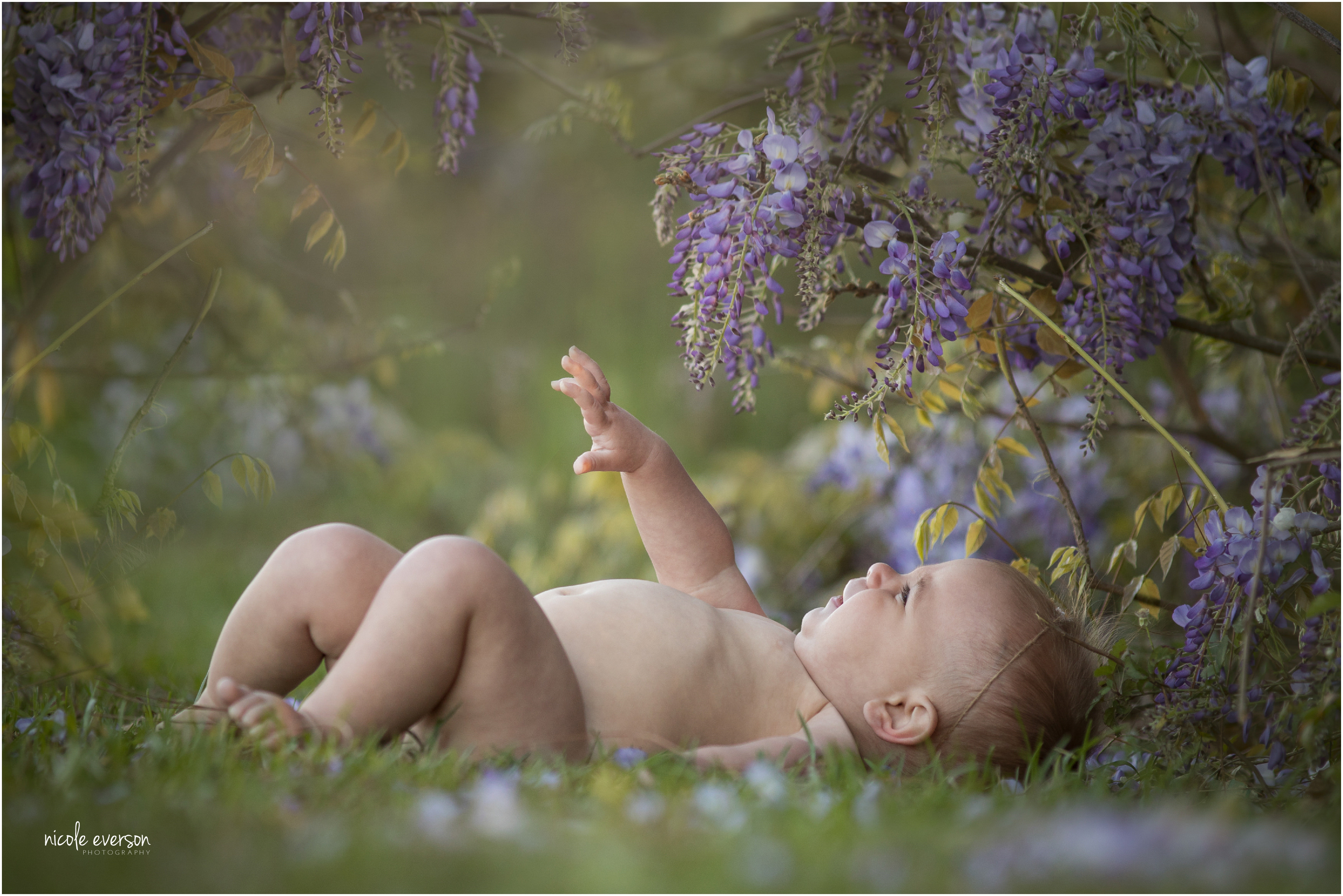 7 month old baby girl photographed surrounded Tallahassee flowers