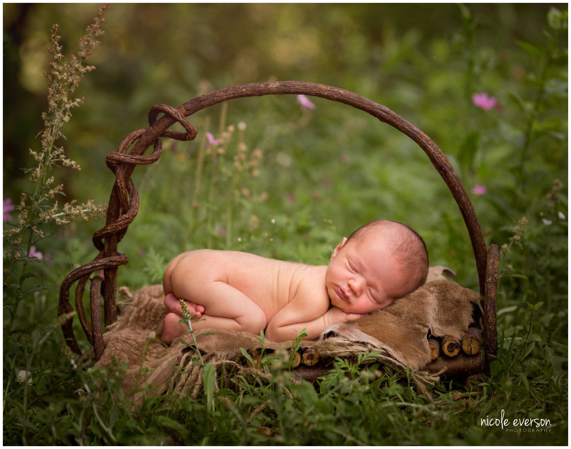 outdoor baby photography by Nicole Everson Photography