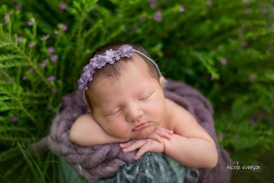 Purple outdoor newborn photography