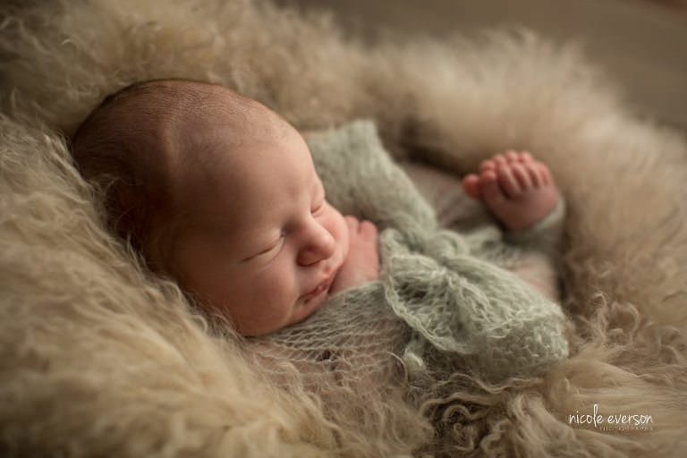 Newborn Photography by Nicole Everson Photography