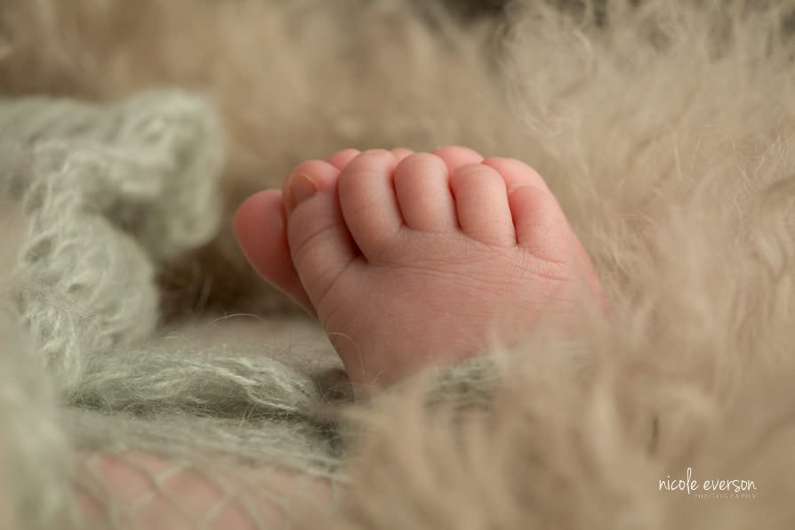 photo of newborn baby toes photographed by Nicole Everson Photography