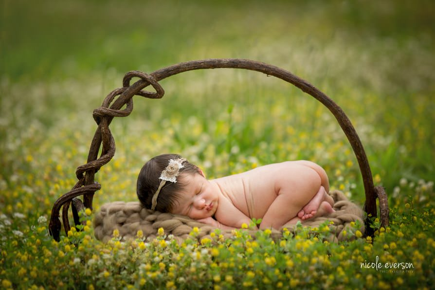 Newborn Photographer Nicole Everson Photography