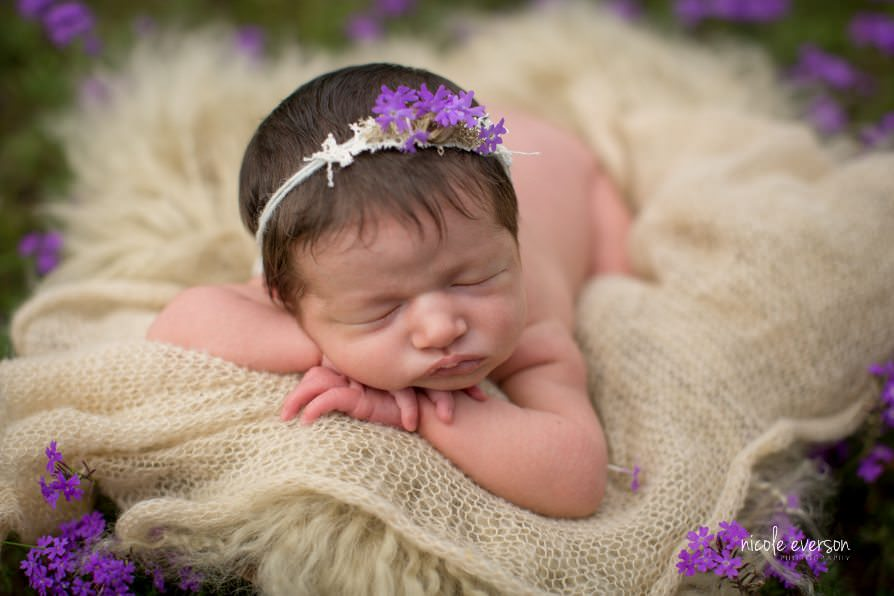 Baby girl newborn photographer Nicole Everson Photography