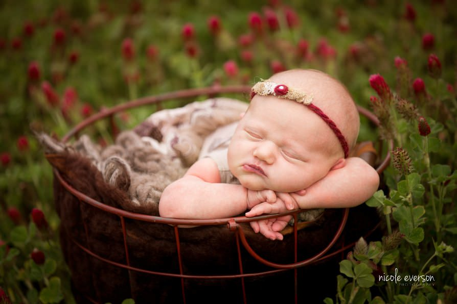 Outdoor flower newborn pictures