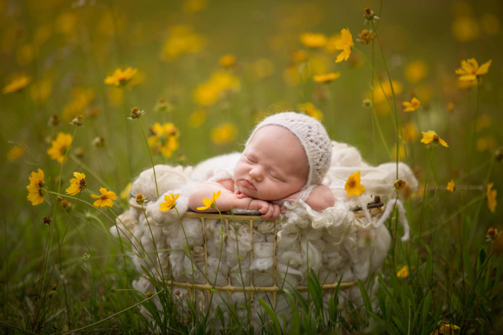 garden newborn photographer