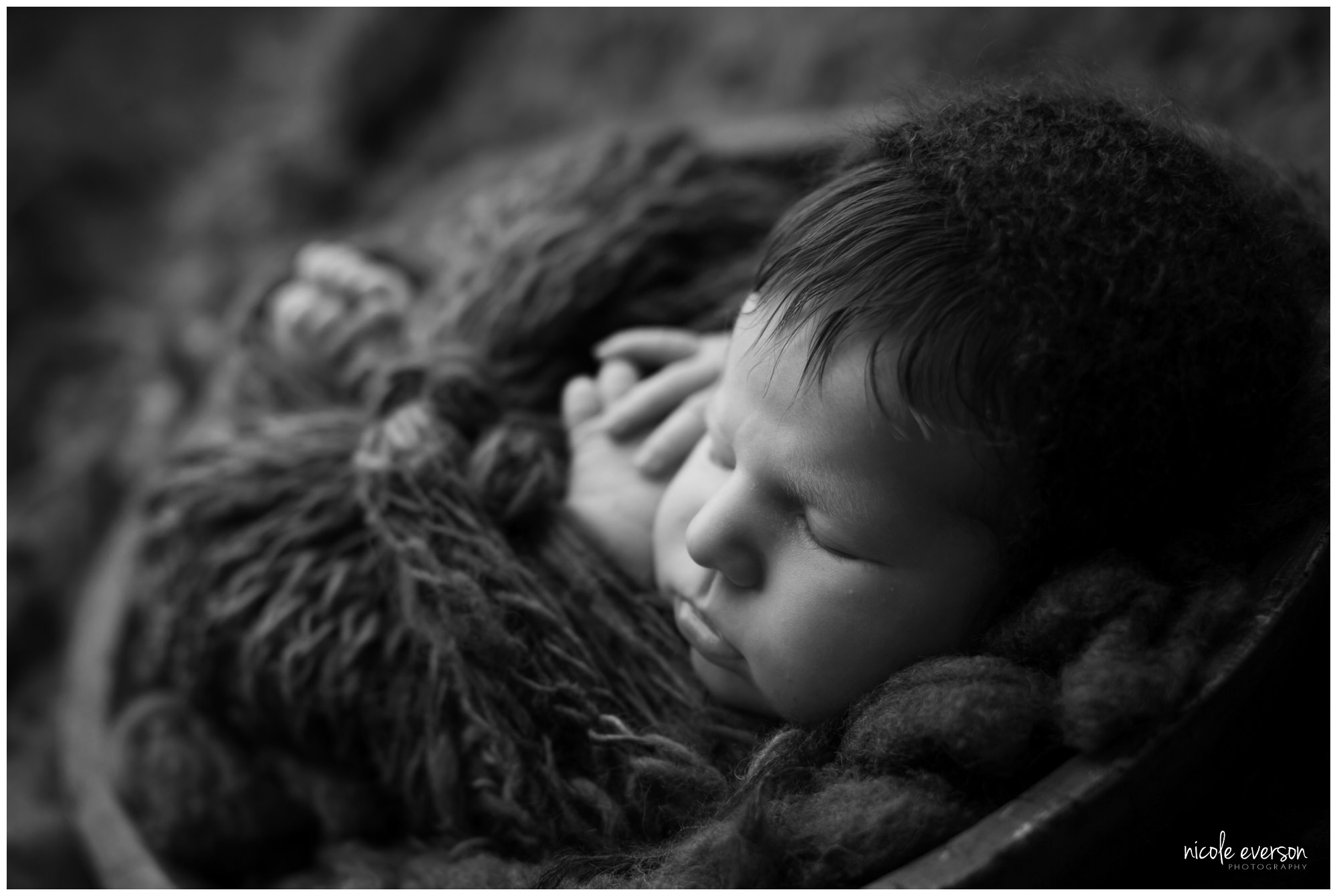 newborn photo shoot by Nicole Everson Photography