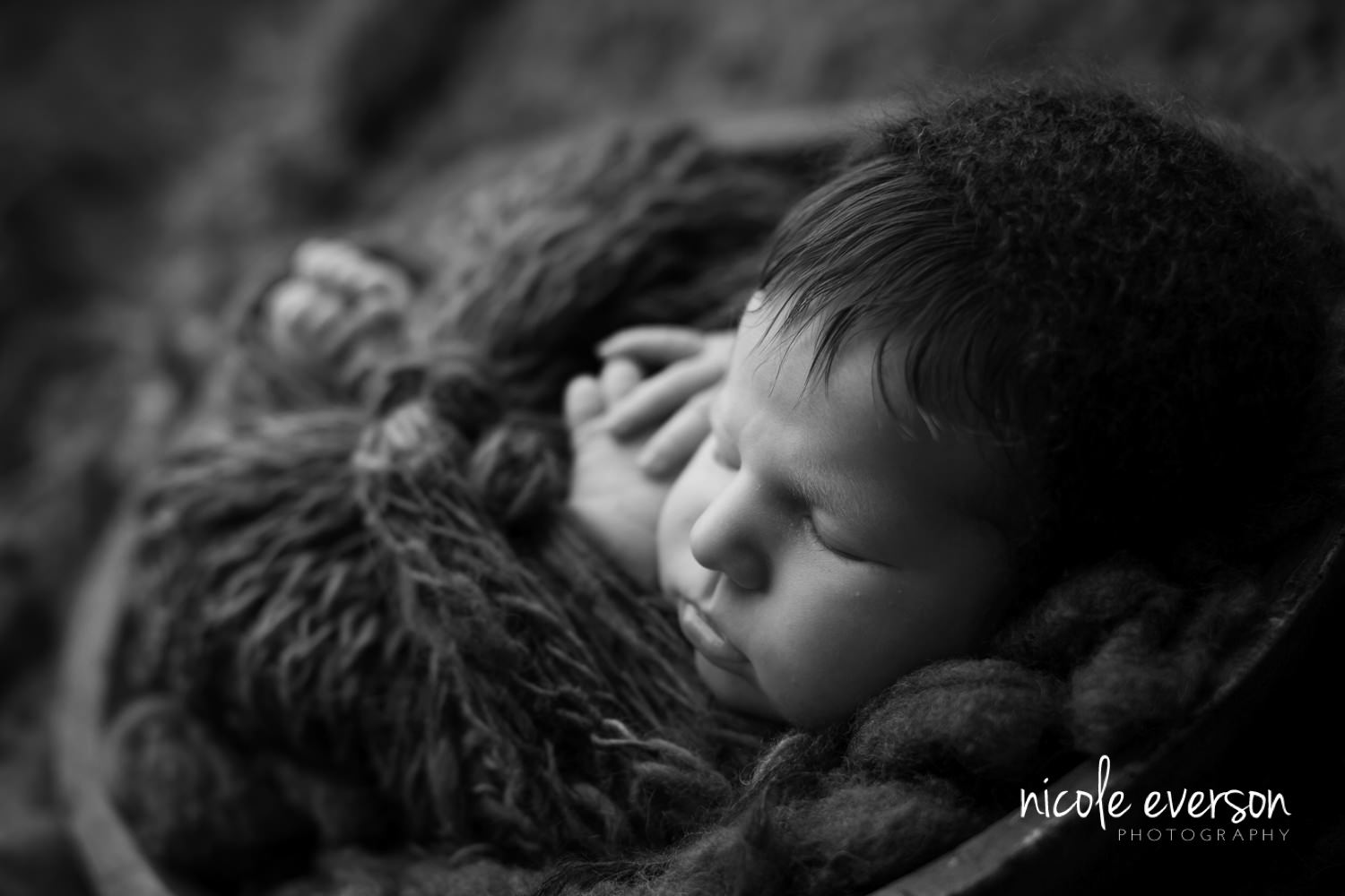 newborn pictures Marianna Florida