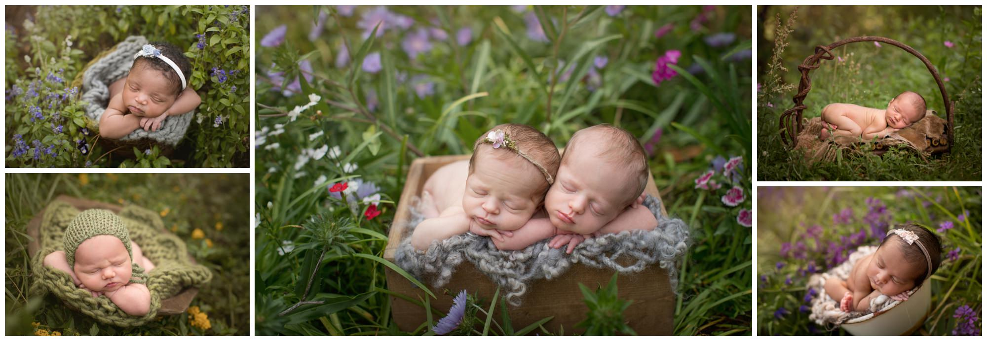 newborns photographed outside in Destin FL by Nicole Everson Photography