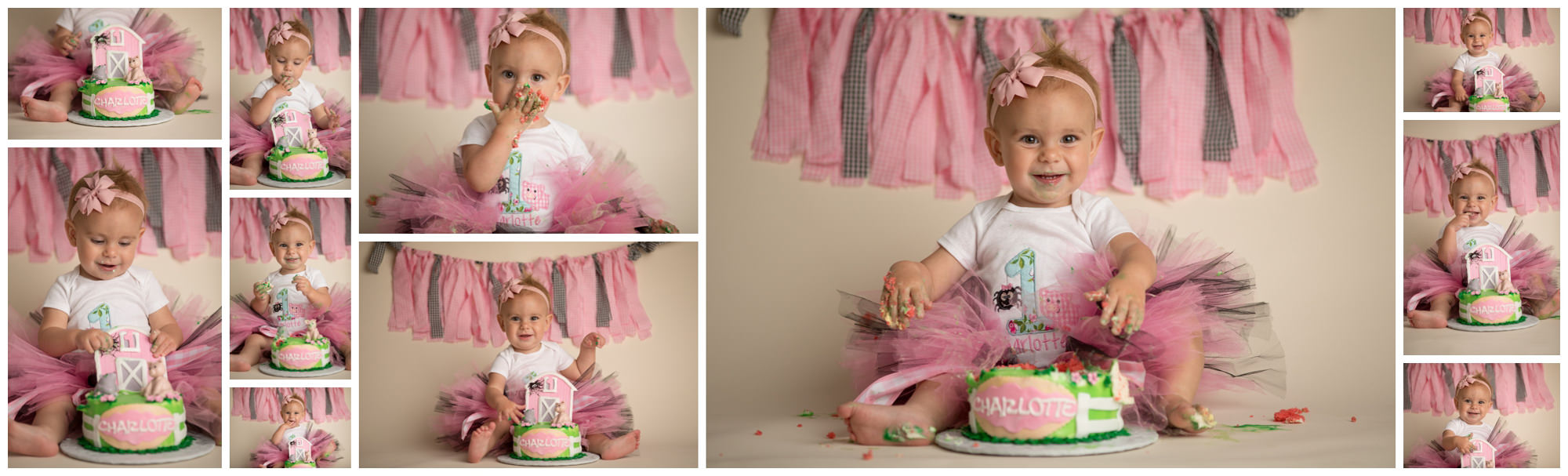 smash cake photoshoot in destin florida