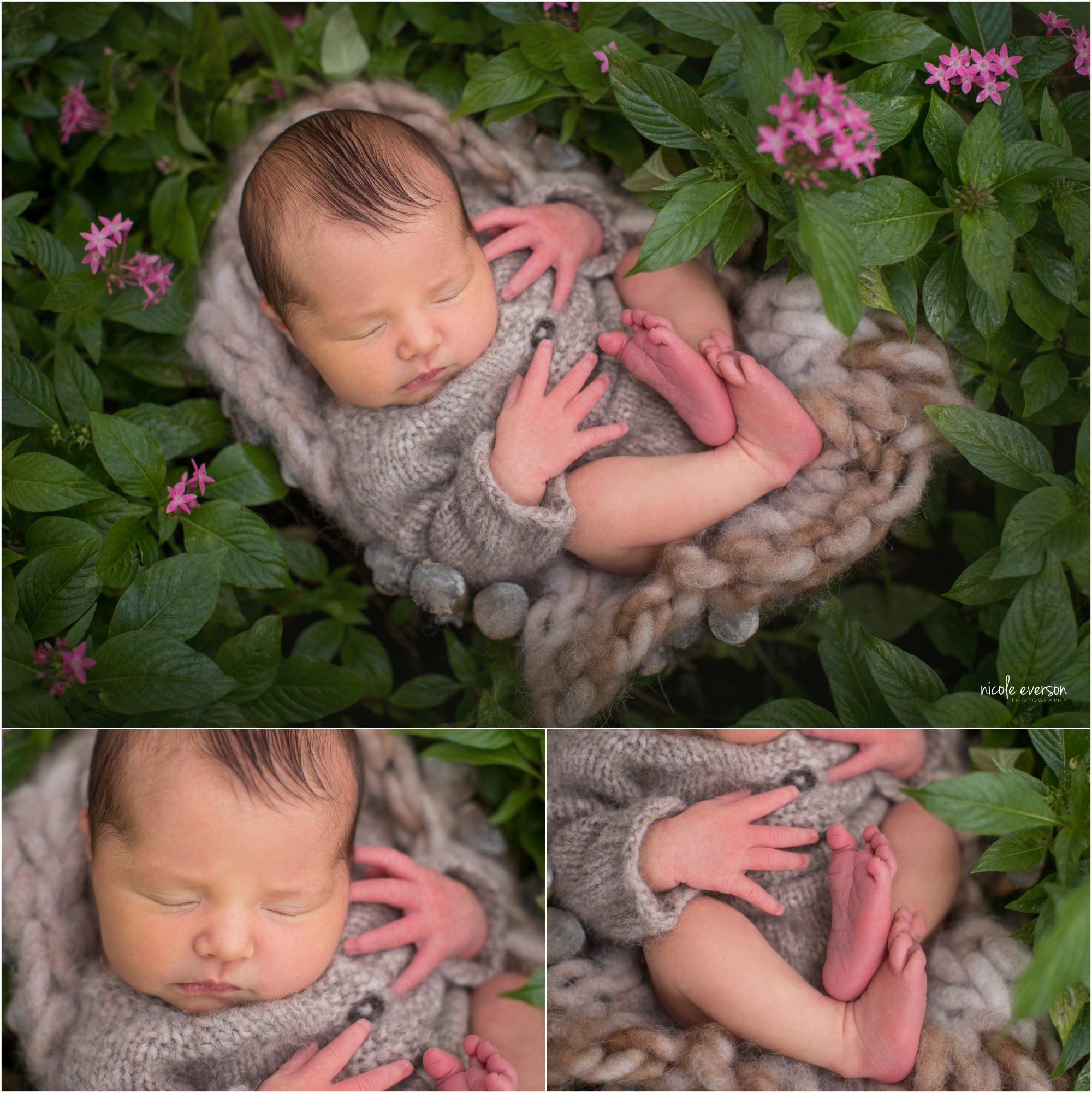 Niceville newborn photographer. Newborn baby girl in a flower patch. Newborn in knit outfit. Nicole Everson Photography.
