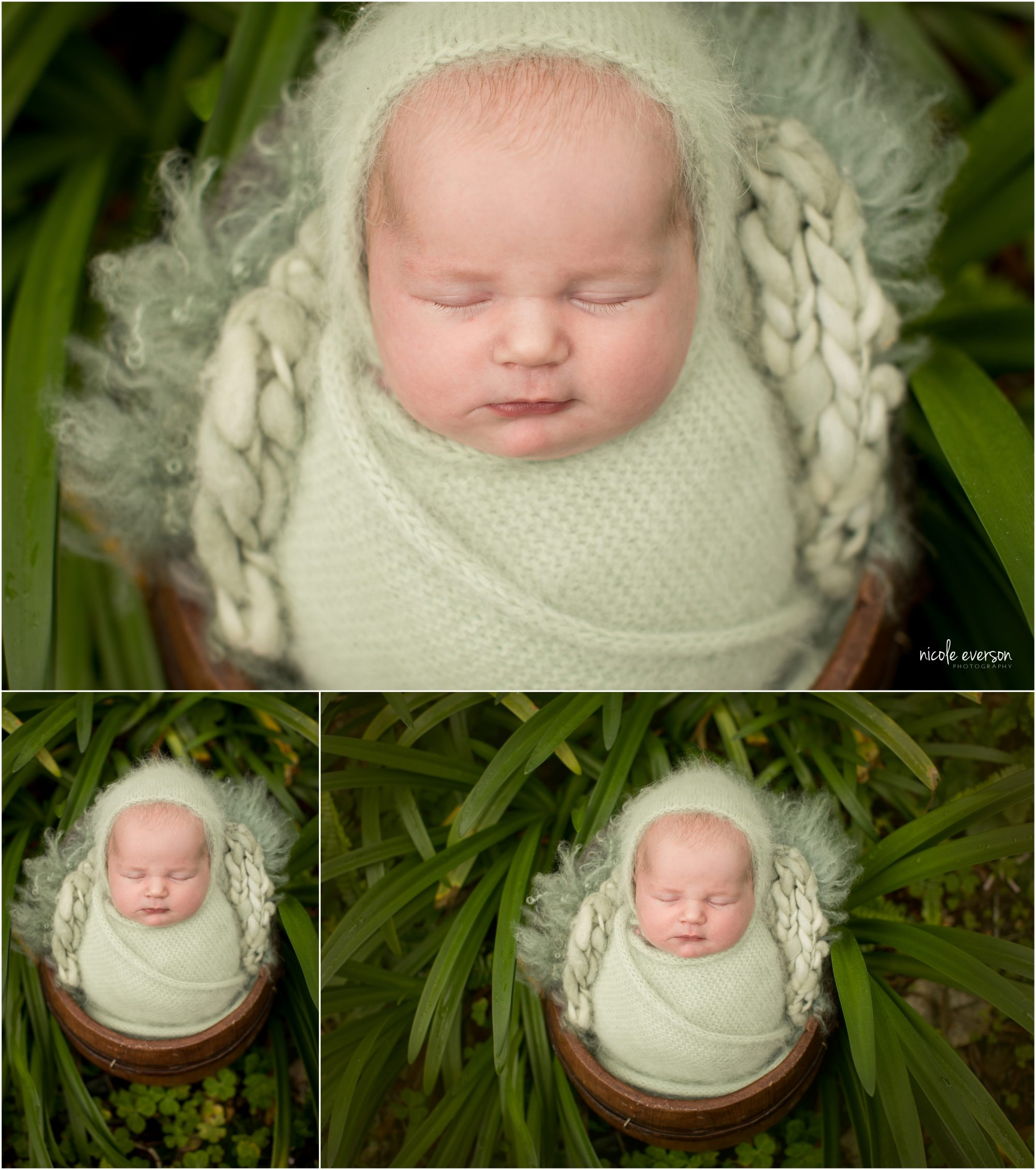 newborn photography outside in the garden
