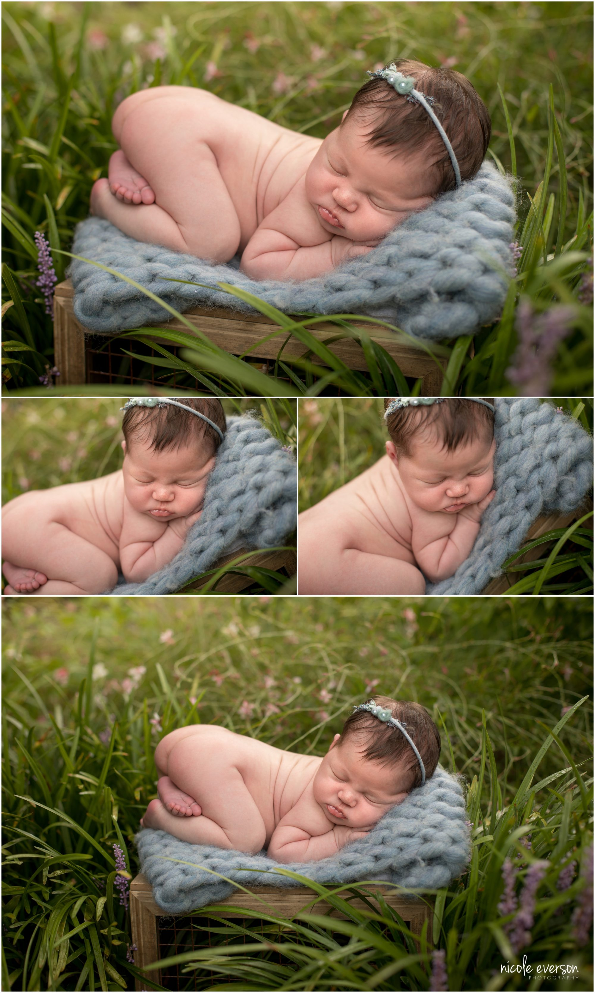 newborn photographers Nicole everson photography